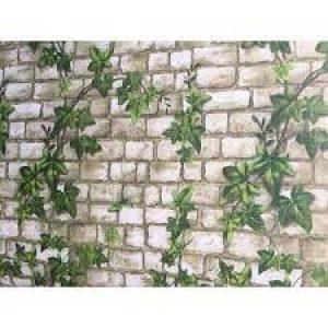 Giấy dán tường dây leo xanh Đài Loan